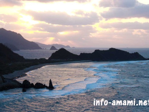 大和村 ヒエン浜の風景