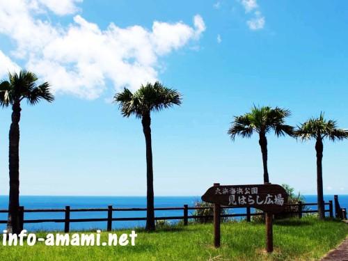奄美市名瀬 大浜海浜公園から見た青空