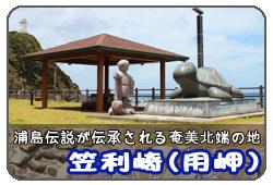 用岬(笠利岬)